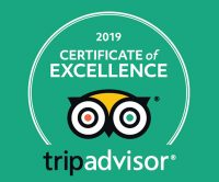 TripAdvisor Certificate 2019
